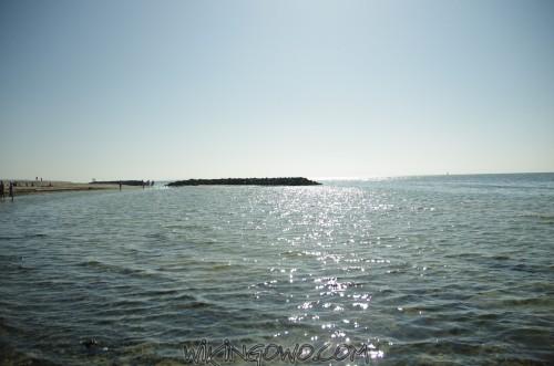 watermarked-IMGP8841